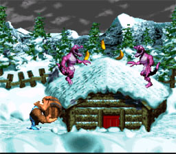 Donkey Kong Country 3: Dixie Kong's Double Trouble! SNES Screenshot Screenshot 4