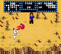 Karate Champ NES Screenshot Screenshot 3