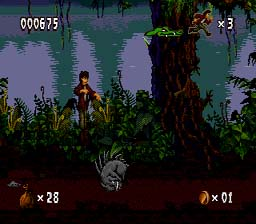 Pitfall: The Mayan Adventure Genesis Screenshot Screenshot 2